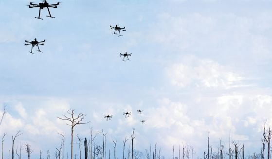Can swarms of seed-bearing drones help regrow the planet's forests?