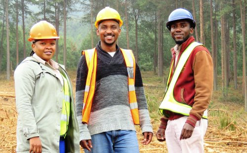 A pioneer of FSC certification takes stock