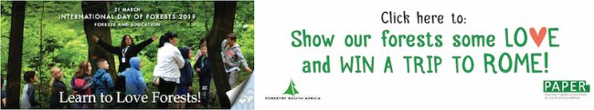 Calling all teachers: Show our forests some love and win a trip to Rome!