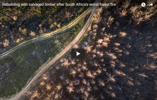 Rebuilding with salvaged timber after South Africa's worst forest fire