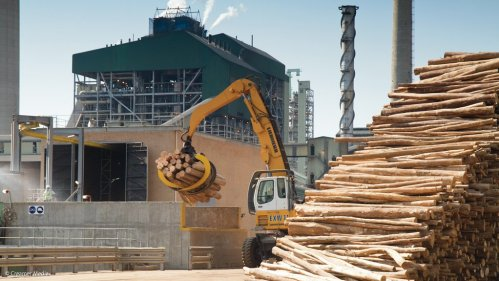 Sappi says dissolving wood pulp prospects remain strong despite near-term pressures