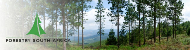 Forestry South Africa