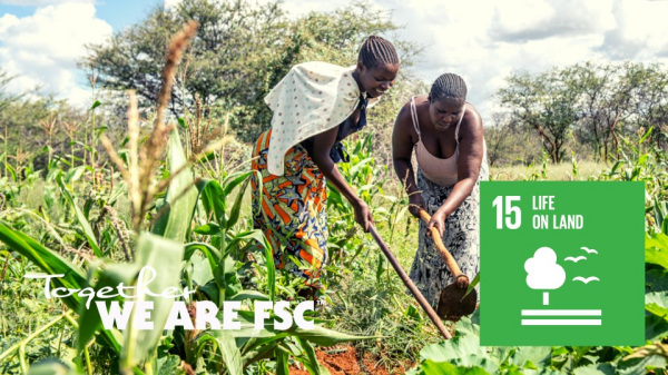 FSC® - a valuable tool for implementing the United Nations Sustainable Development Goals