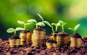 New Agriculture Development Agency Aims For R25bn In Investment