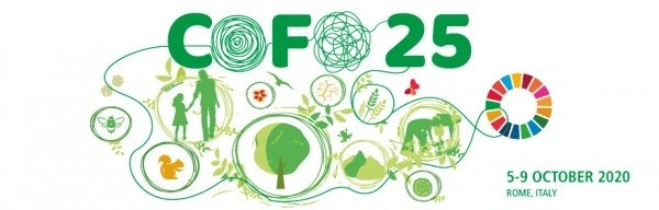 Global forest sector and workers: providing solutions for pandemic recovery