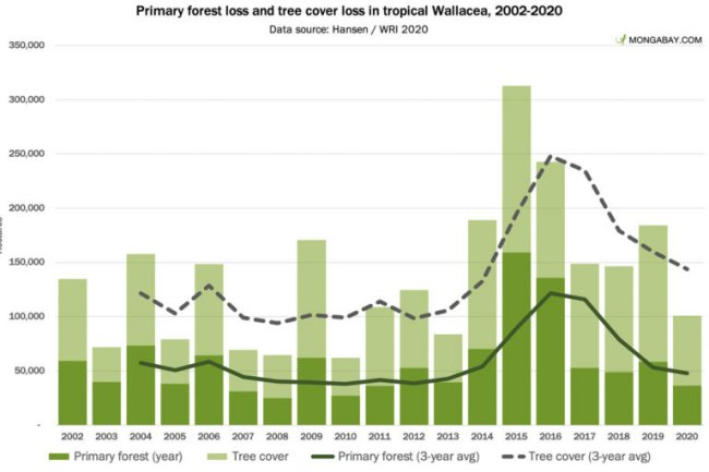 Primary Forest Loss