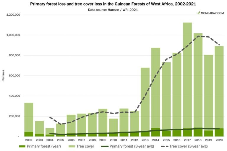 Primary Forest loss Guinean