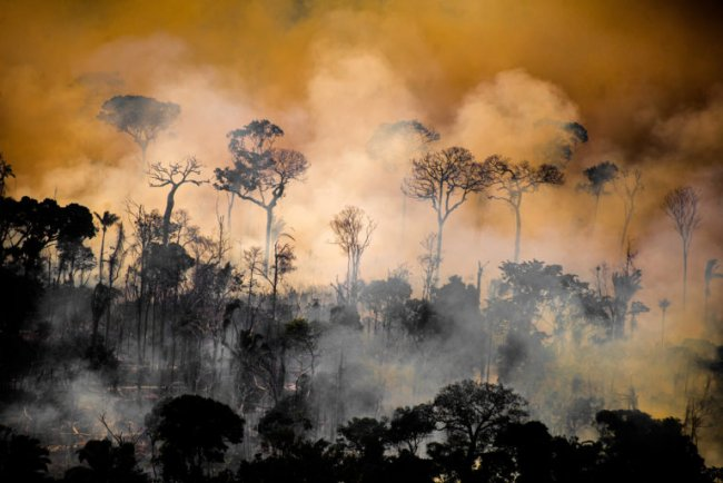 Forest next to the borders of the Kaxarari Indigenous territory, in Lábrea, Amazonas state during the 2020 burning season in the Brazilian Amazon. Taken Aug 17, 2020. CREDIT: © Christian Braga / Greenpeace