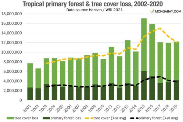 Global Forest Increase