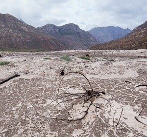 City of Cape Town betrayed farmers by surrendering Day Zero predictions