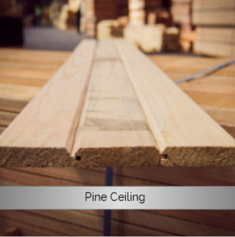 Pine Ceiling
