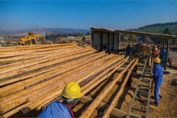 RB Timber Group_4
